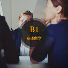 意语B1水平