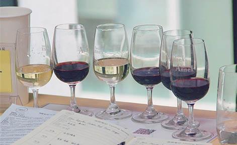 成都德斯汀安葡萄酒学院