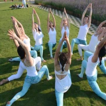 瑜伽培训 (3)