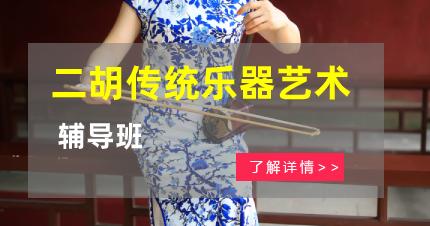 南京二胡传统乐器艺术辅导班