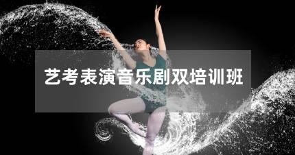 北京艺考表演音乐剧双培训班