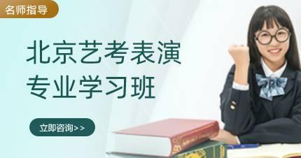 北京艺考表演专业学习班