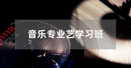深圳音乐专业艺考学习班