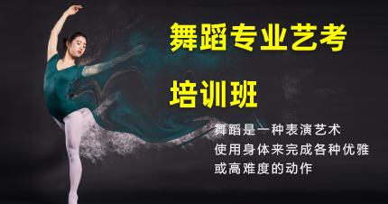 东莞清溪舞蹈专业艺考培训班